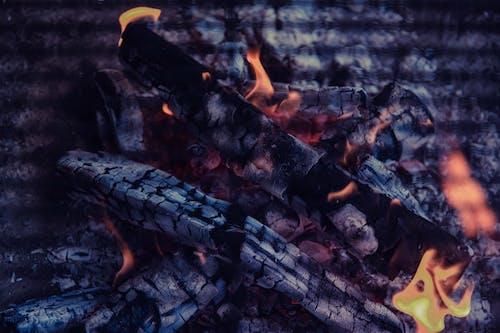 Kostenloses Stock Foto zu brennen, feuer, flamme, holzkohle