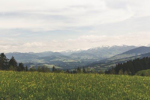 Gratis lagerfoto af bane, bjerge, bjergkæde, landskab