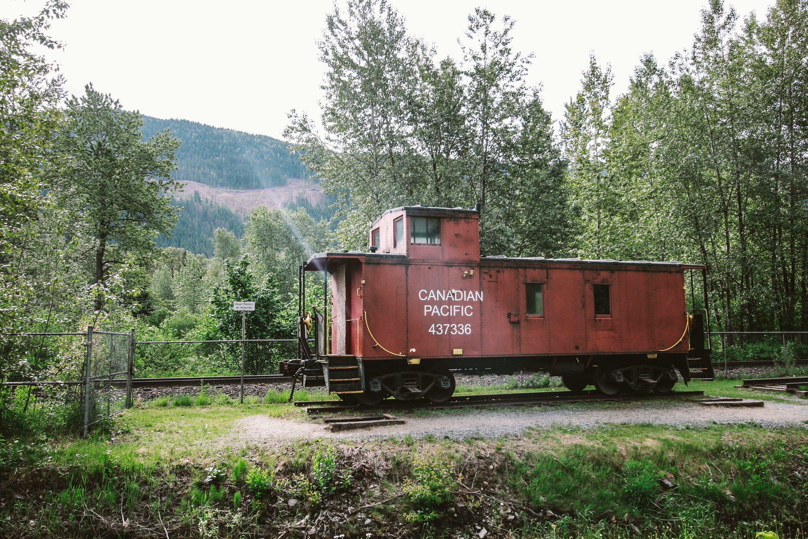 Gratis lagerfoto af Canada, natur, tog