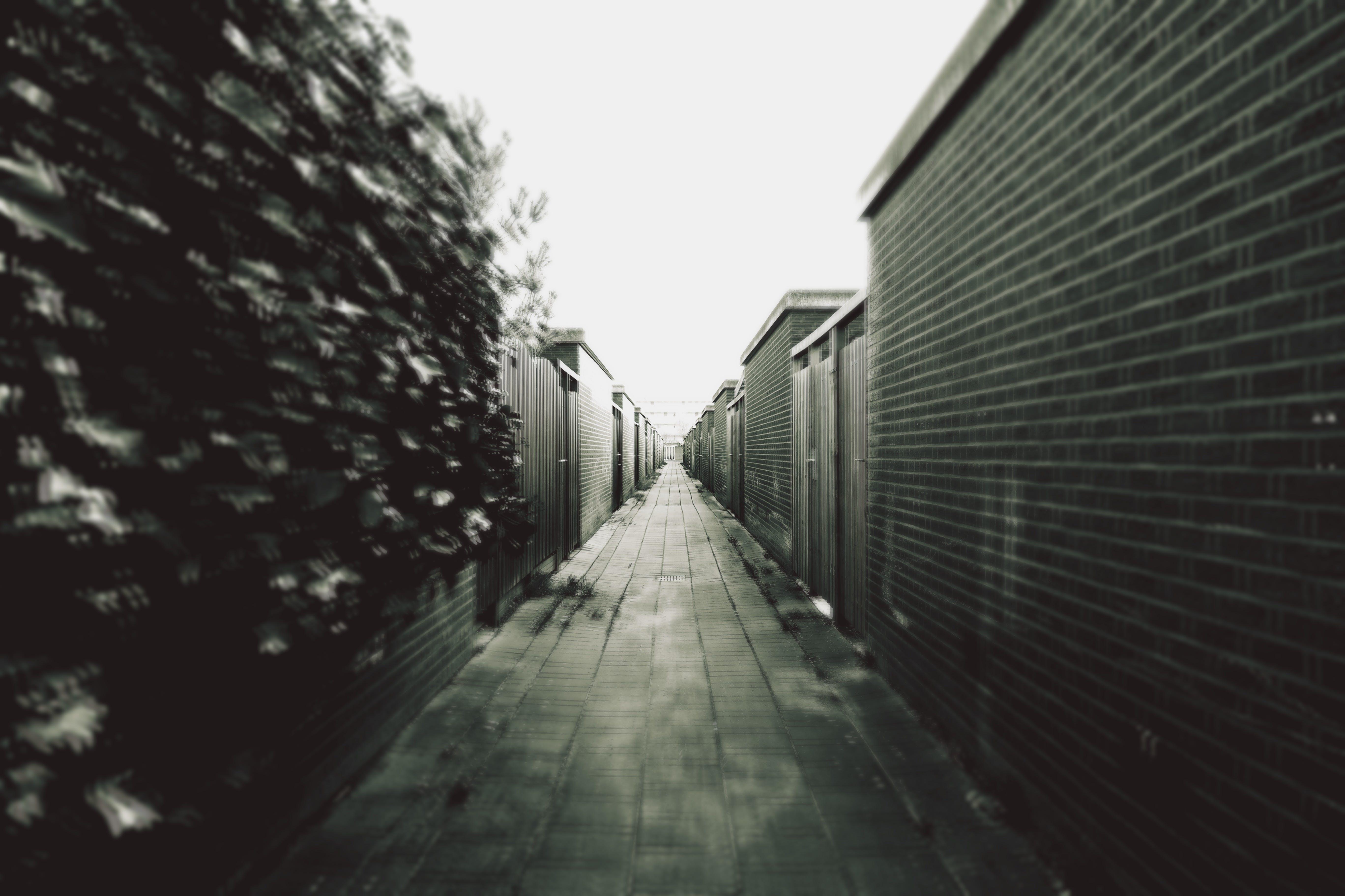 Grey Scale Photography of a Corridor