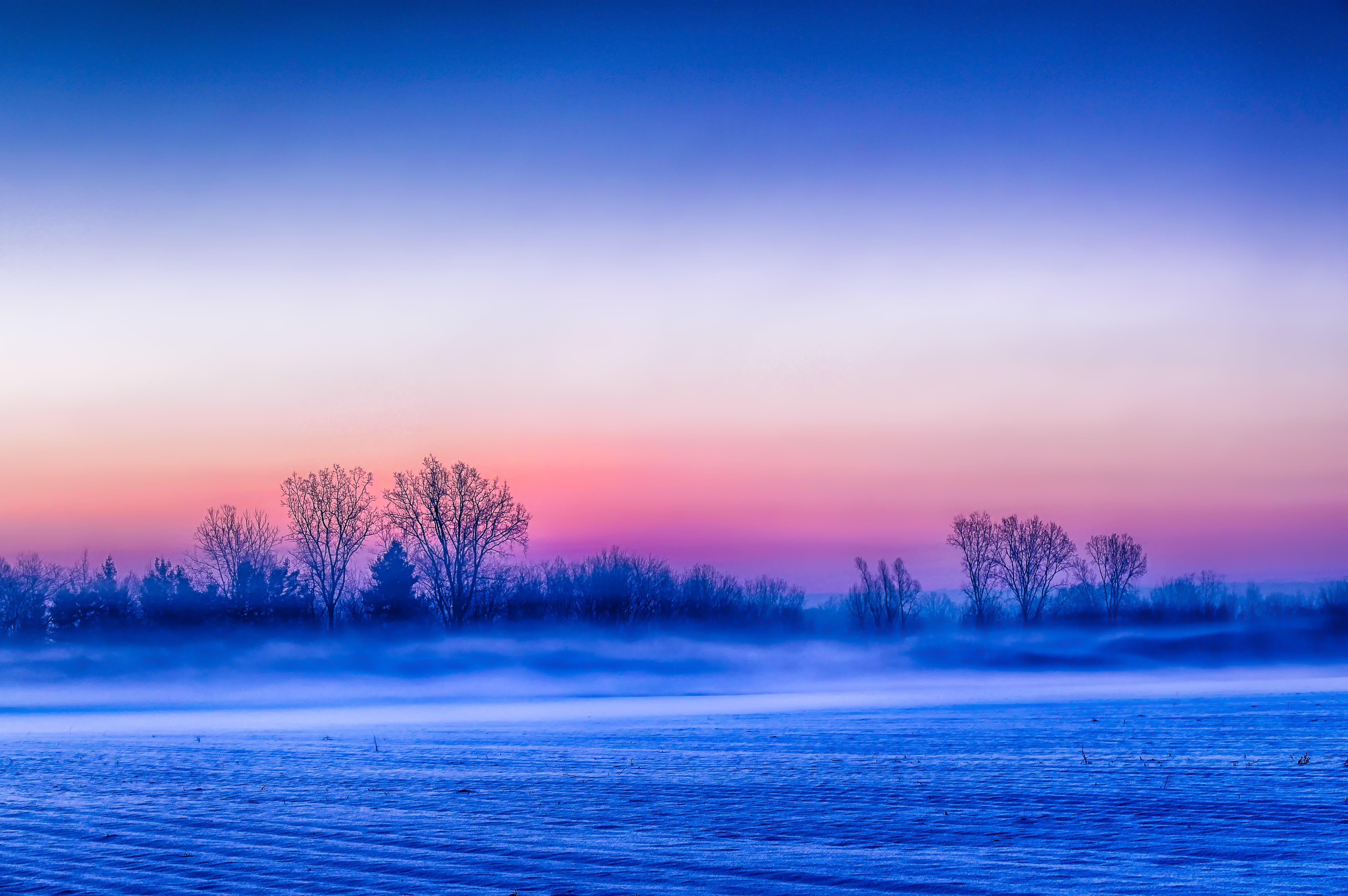 Free stock photo of field, fog, sunrise, winter