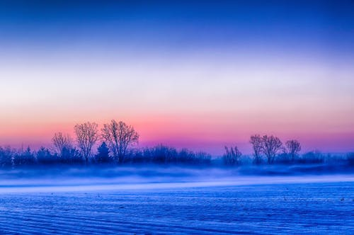Бесплатное стоковое фото с восход, зима, поле, туман