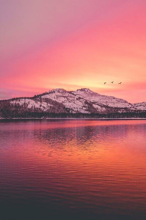 Fotos de stock gratuitas de agua, amanecer, arena, bonito