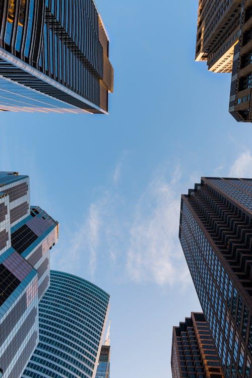 Kostenloses Stock Foto zu architektur, architekturdesign, aufnahme von unten, büros