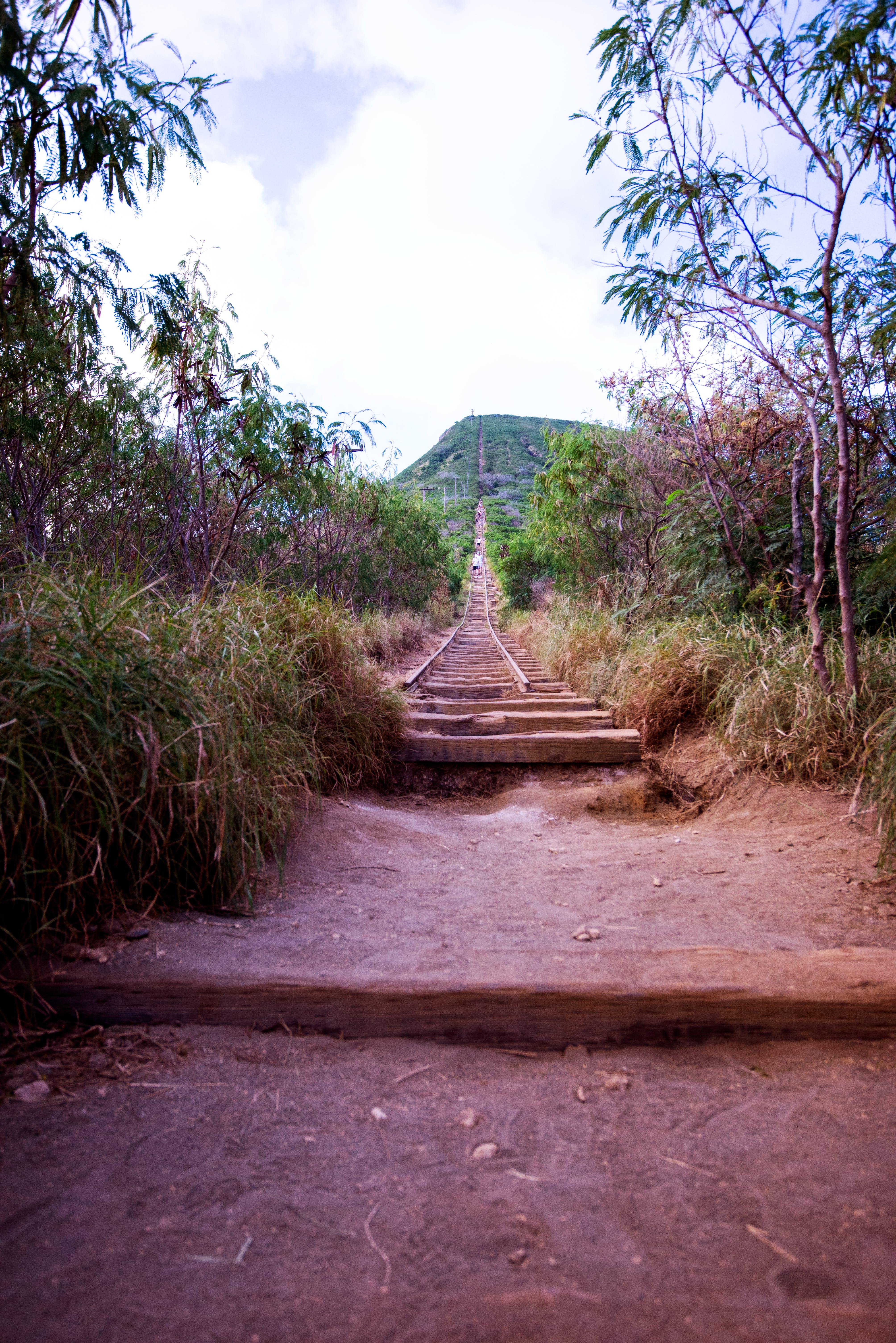 Free stock photo of mountain hiking, stairs, wooden stairs