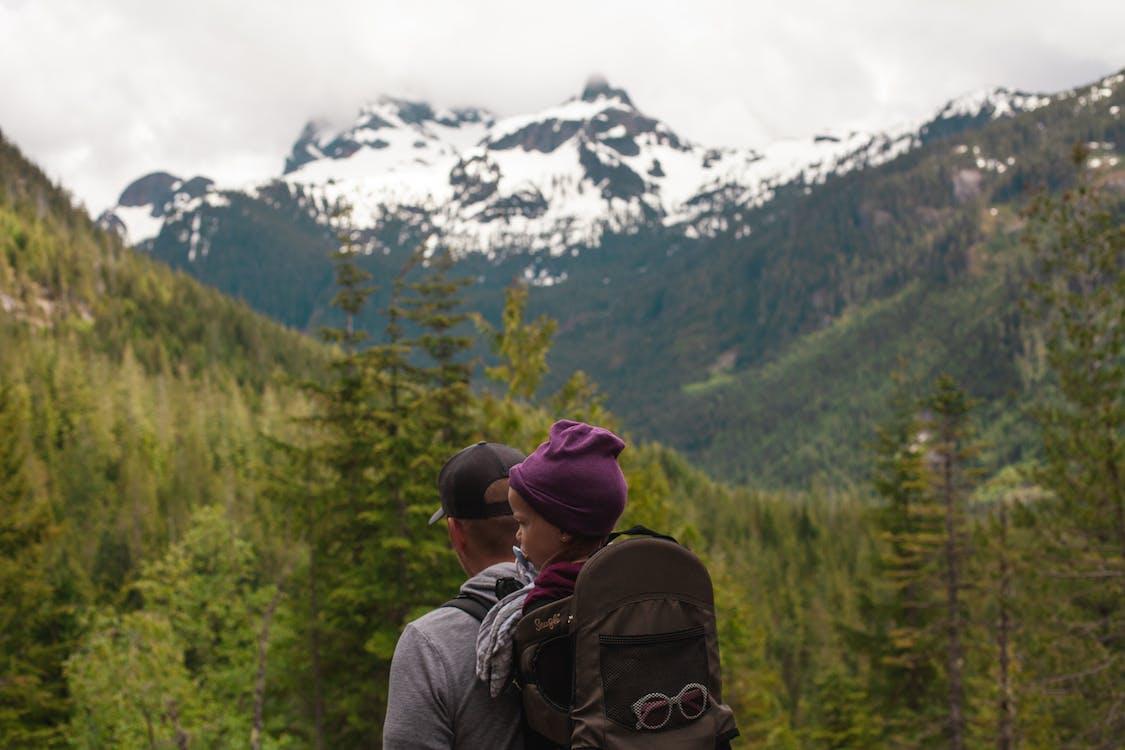 avontuur, bergen, bomen