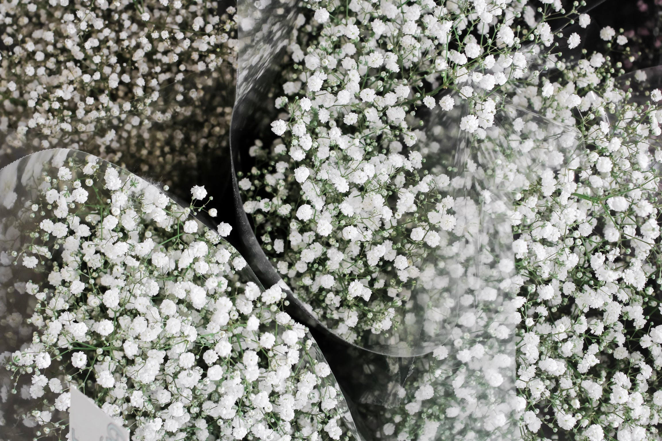 Free stock photo of baby's breath flower, beautiful, beautiful flowers, bunch of flowers