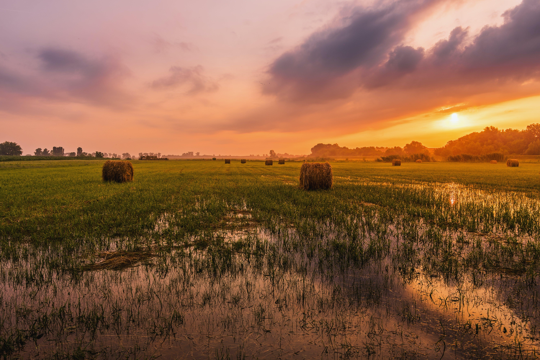 Foto profissional grátis de alvorecer, área, campo de feno, canudo