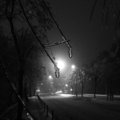 Free stock photo of black-and-white, city, ice