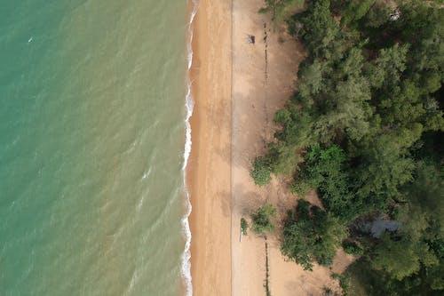 Foto profissional grátis de aerofotografia, água, areia, árvores
