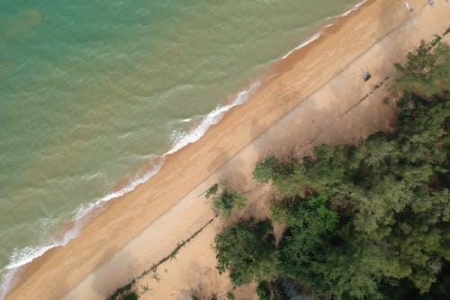 Foto d'estoc gratuïta de aigua, horitzó, mar, natura
