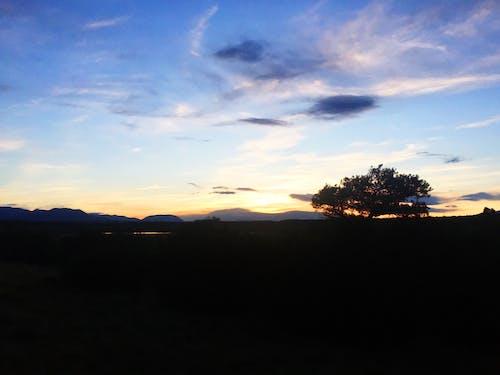Základová fotografie zdarma na téma modrá obloha, mraky, oranžová obloha, purpurové nebe