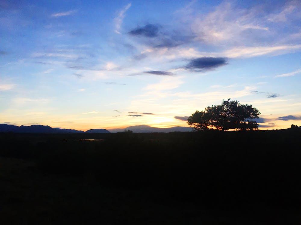 błękitne niebo, chmury, drzewo