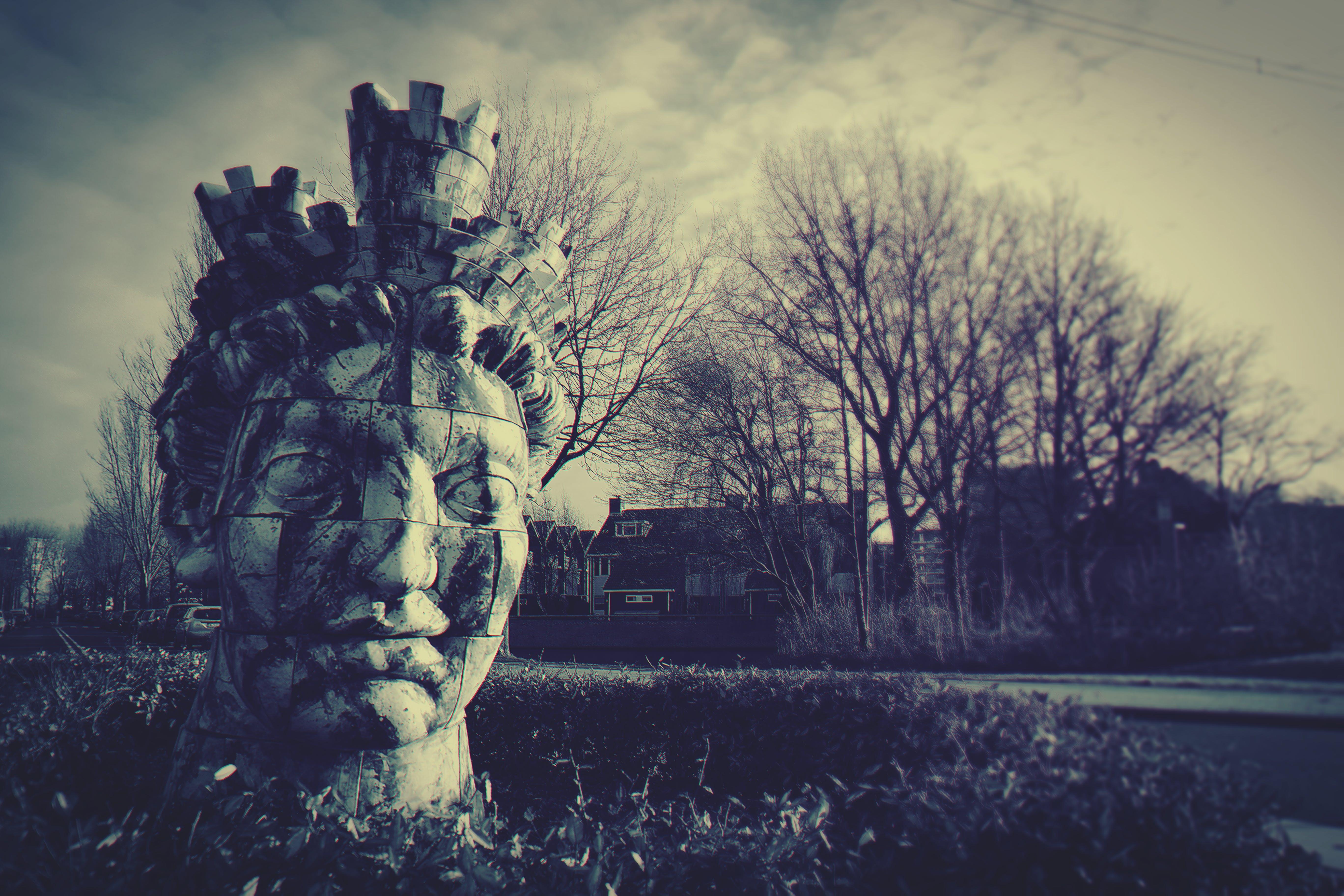 Human Head Statue Near Bare Trees