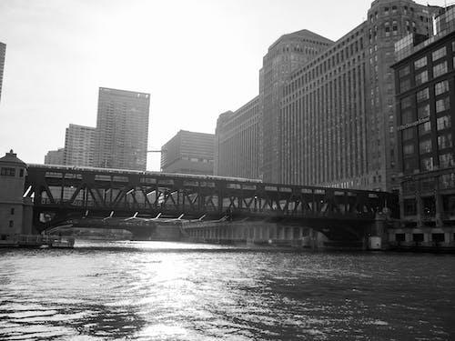 기차, 블랙 앤 화이트, 시카고, 화창한의 무료 스톡 사진