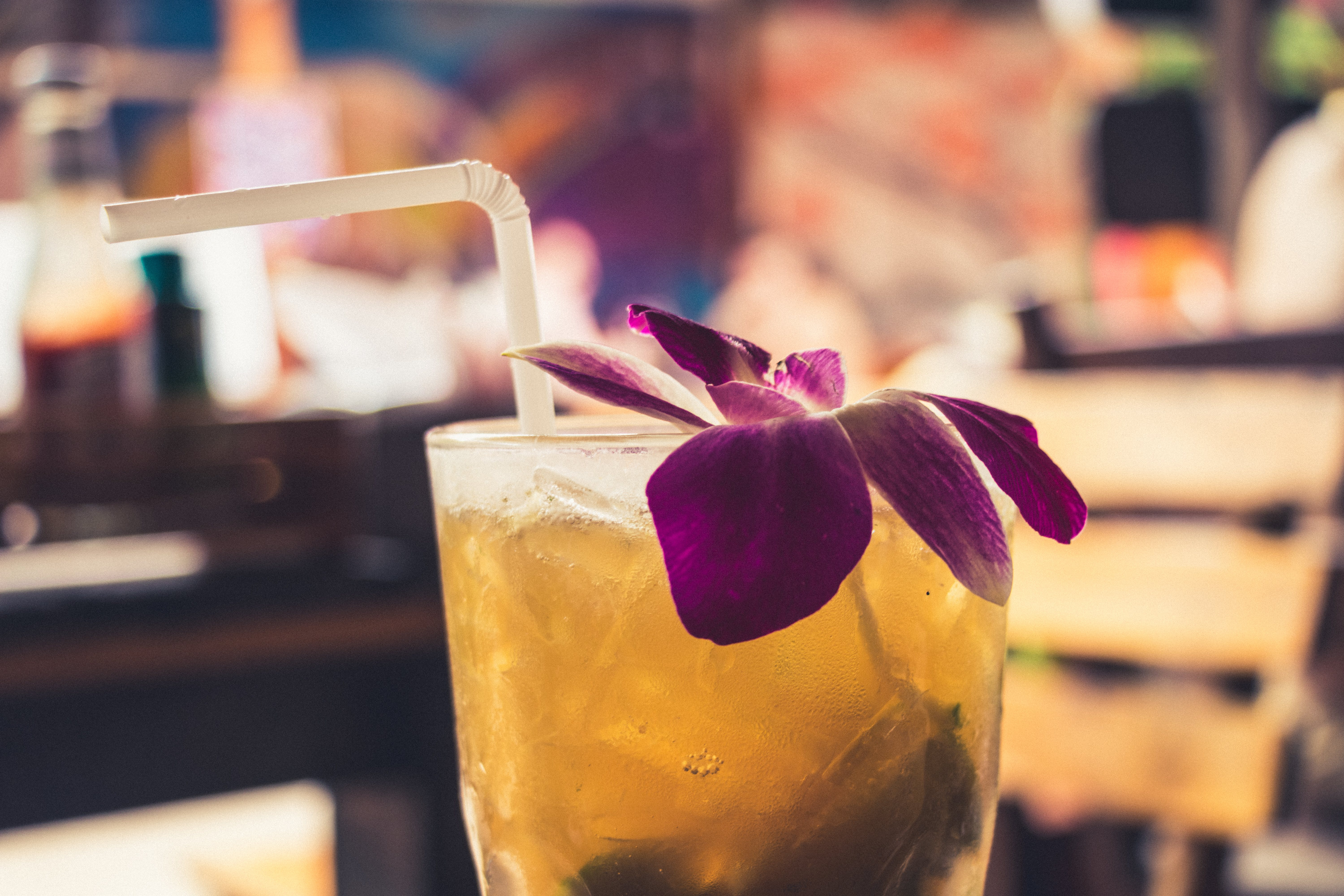 Free stock photo of summer, bar, cocktail, drink