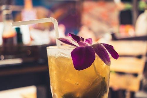 Kostenloses Stock Foto zu bar, blume, cocktail, getränk