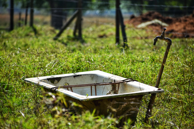 Free stock photo of bathtub, field, field of grass, long grass