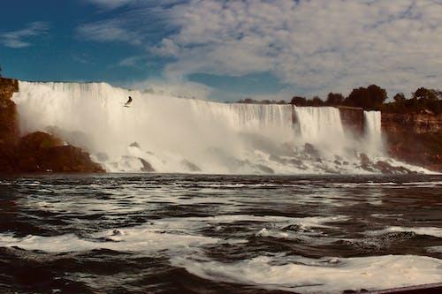 Photos gratuites de bord de mer, cailloux, cascades, Chutes du Niagara