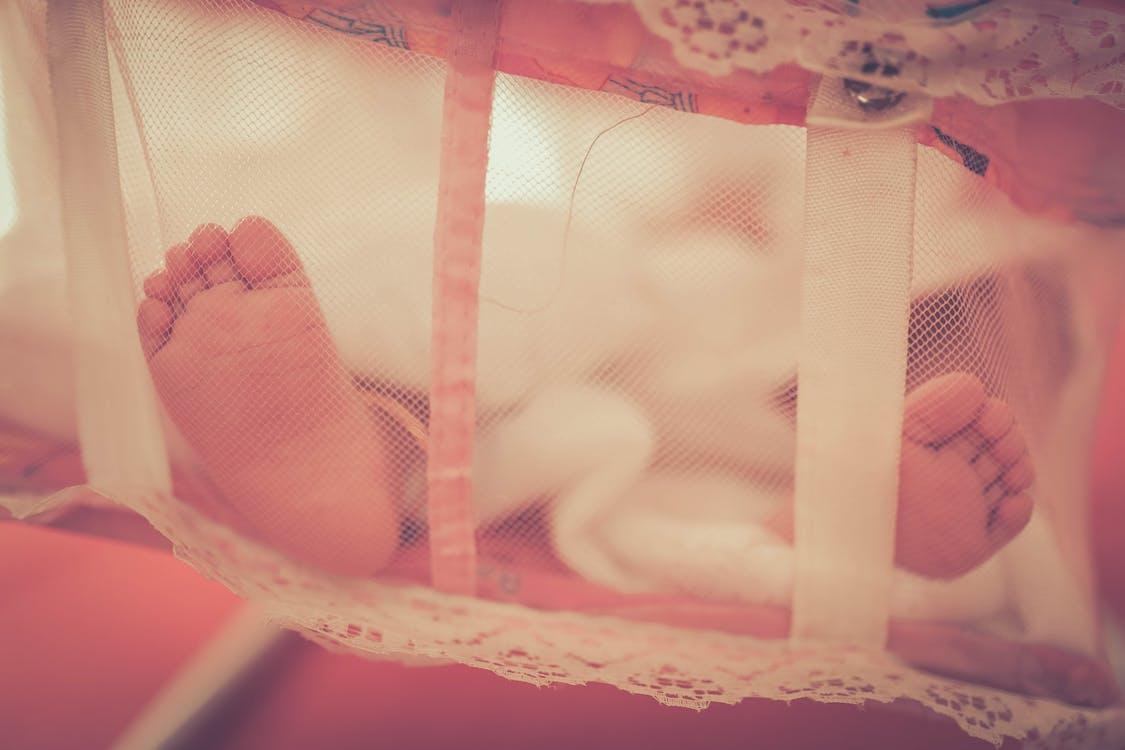 Ingyenes stockfotó baba, babaláb, bölcső témában
