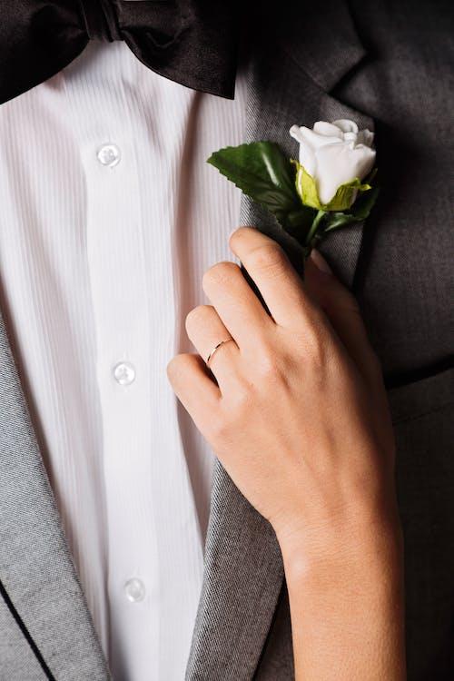 꽃, 남자, 로맨스, 반지의 무료 스톡 사진