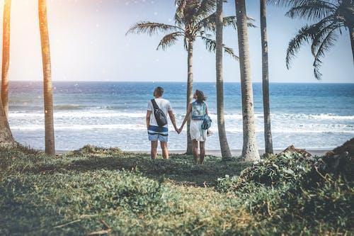 Imagine de stoc gratuită din albastru, coastă, cuplu, faleză