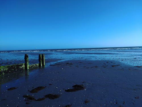 Free stock photo of 15.JBrown, beach, calm, instagram