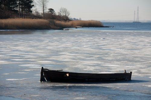 Immagine gratuita di barca, costa, fiordo, ghiaccio