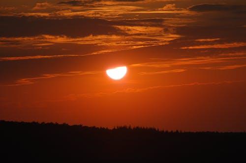 Darmowe zdjęcie z galerii z pomarańcza, treeline, zachód słońca