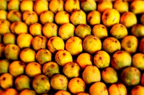 Fotos de stock gratuitas de felicidad, mangos, rey de las frutas, summer vibes