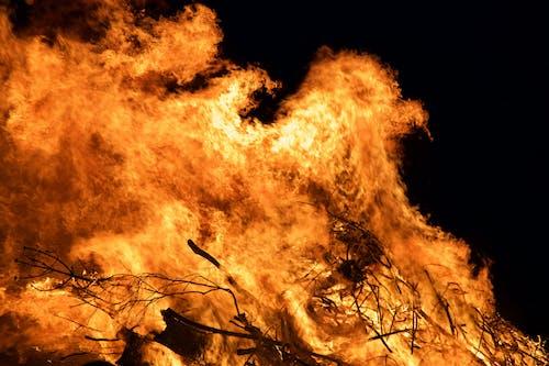 Immagine gratuita di arancia, fuoco