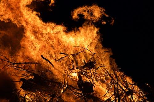 Immagine gratuita di arancia, dettaglio, fuoco, notte