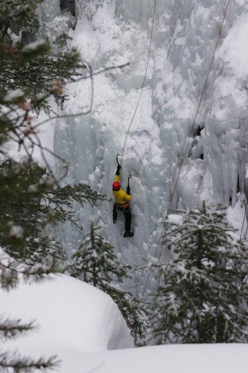 Gratis stockfoto met ijs, klimmer