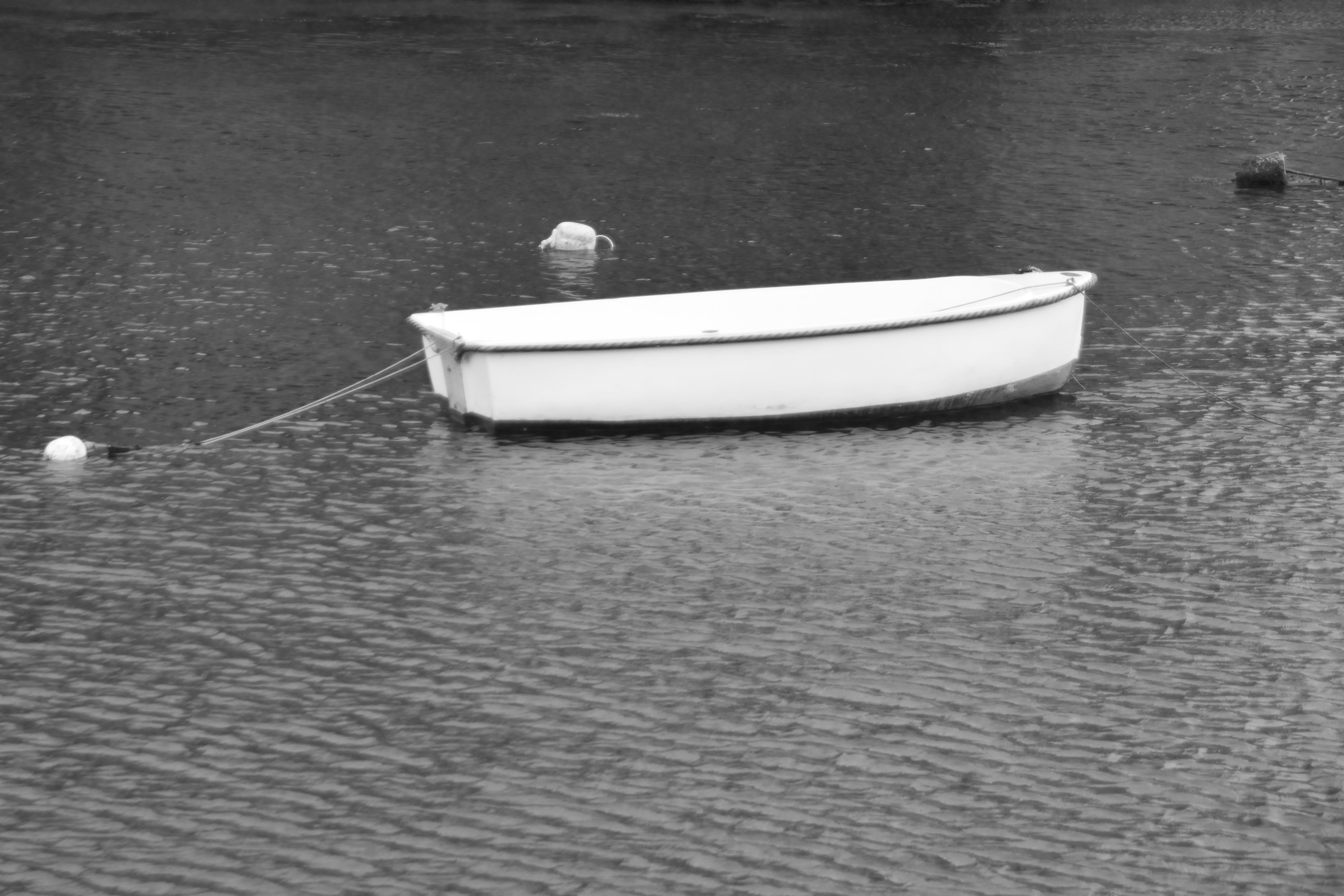 Free stock photo of barque, bateau, bouées, calme