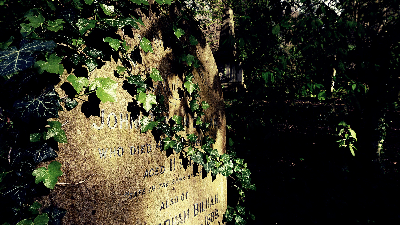 Free stock photo of cemetery, graves, gravestones, grave