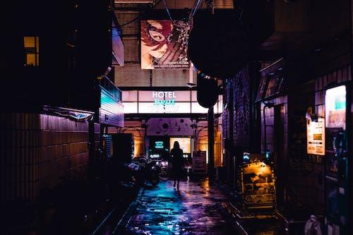 akşam, dişi, gece, gece ışıkları içeren Ücretsiz stok fotoğraf