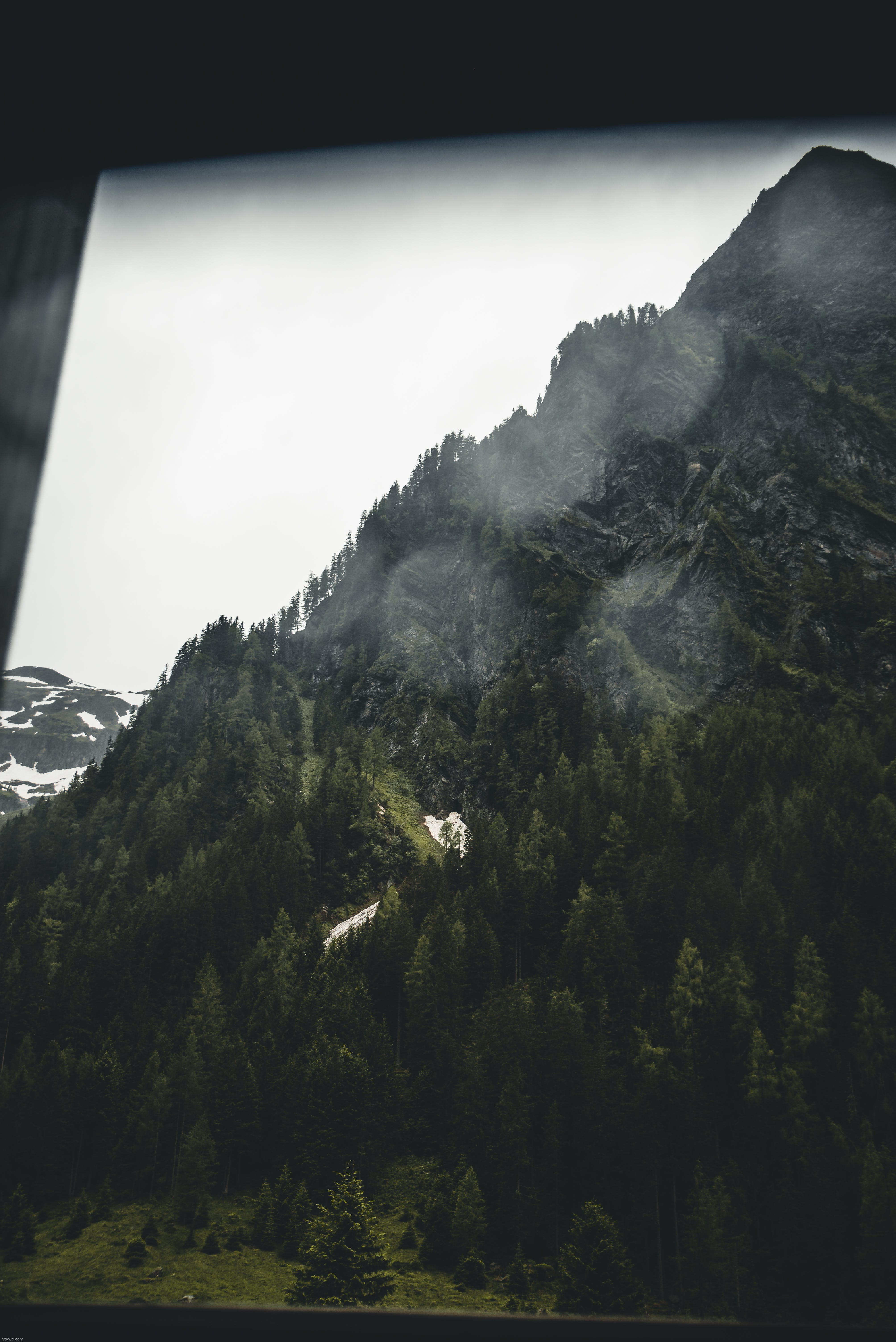 Mountain Ranges With Trees Screengrab