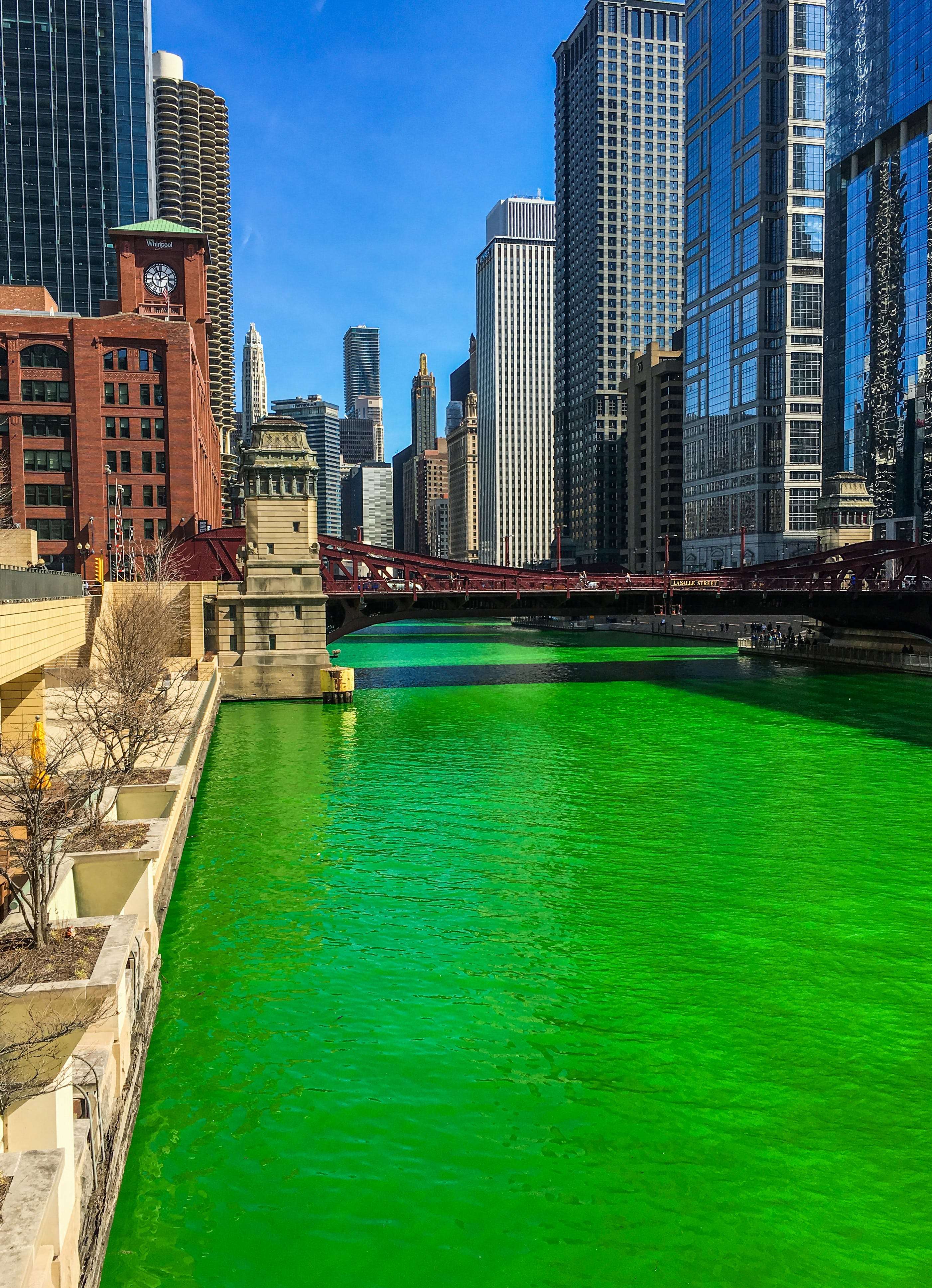 Free stock photo of chicago, green, IL, St. Patrick's day