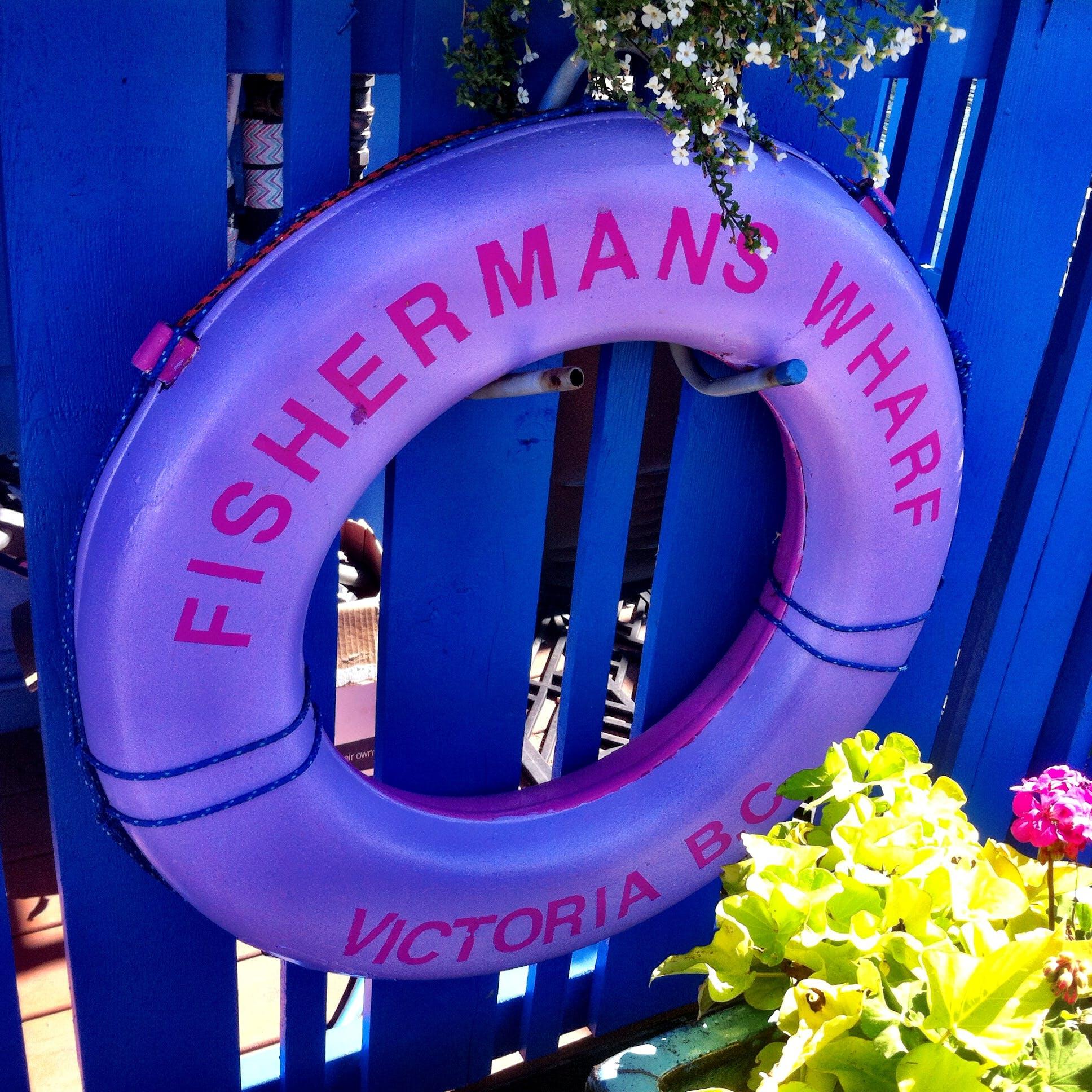 Free stock photo of Fisherman's warf