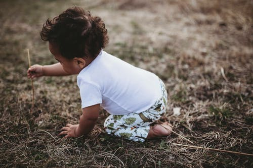 Free stock photo of baby, boy, dry grass, little boy