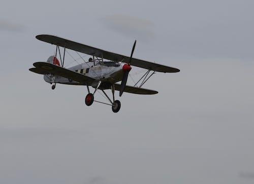 Fotos de stock gratuitas de avión de combate, doble ala, espectáculo aéreo