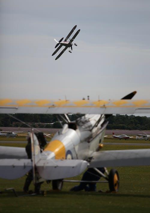 Fotos de stock gratuitas de doble ala, espectáculo aéreo