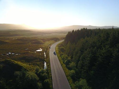 Fotos de stock gratuitas de bosque, carretera, foto con dron, puesta de sol