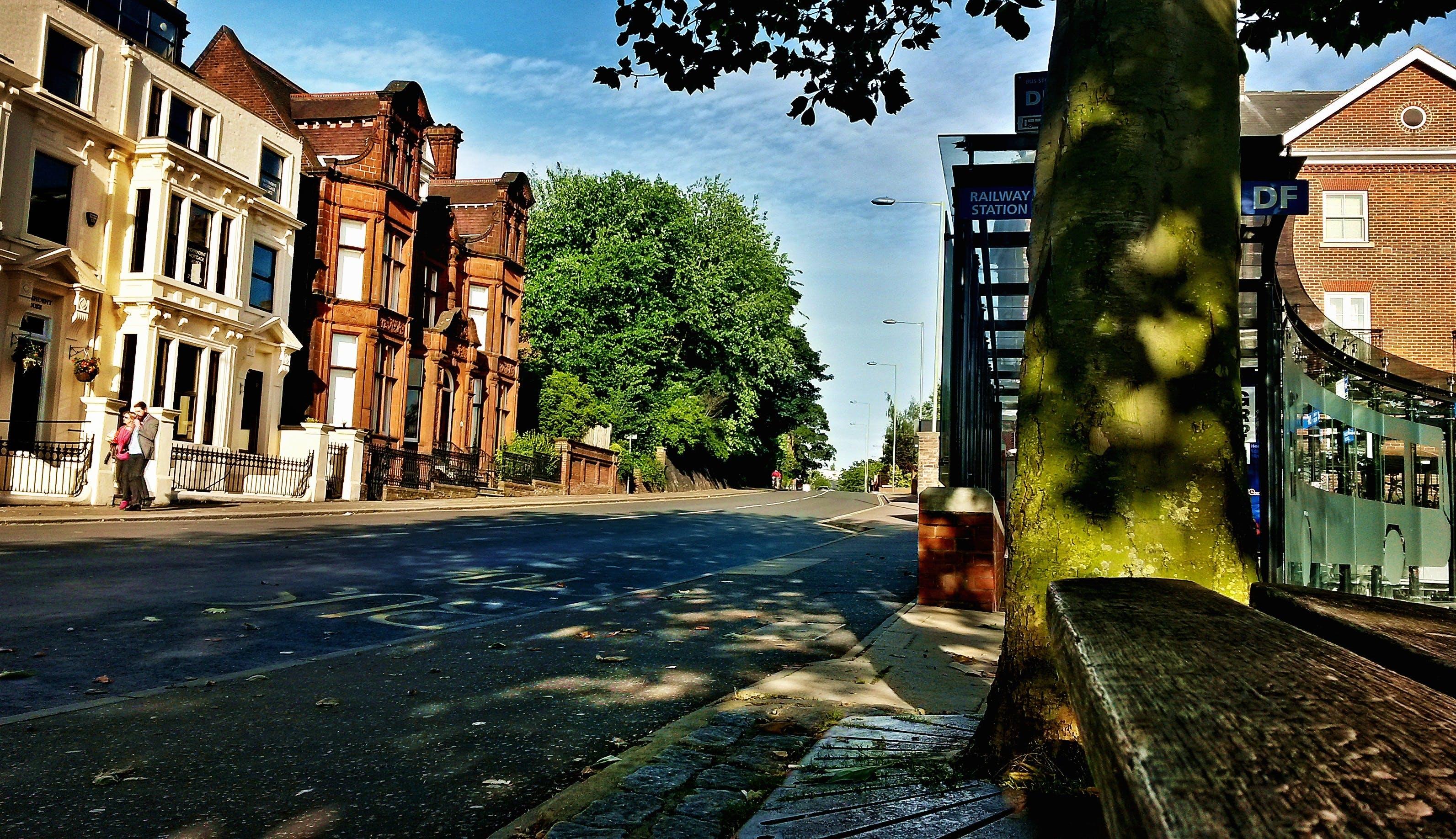 Free stock photo of city, road, street, summer
