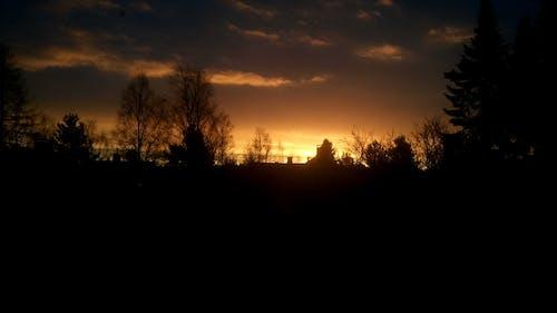 Imagine de stoc gratuită din ora de aur, soare auriu