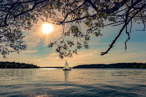 Kostenloses Stock Foto zu bäume, himmel, segelboot, segeln