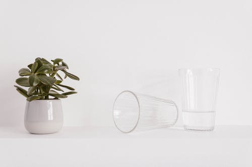 Two Clear Glass Drinking Cups