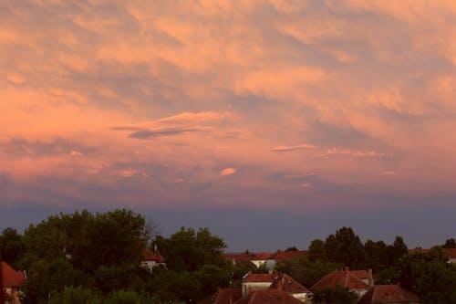 Gratis arkivbilde med cumulus, himmel, skyer, skyet himmel