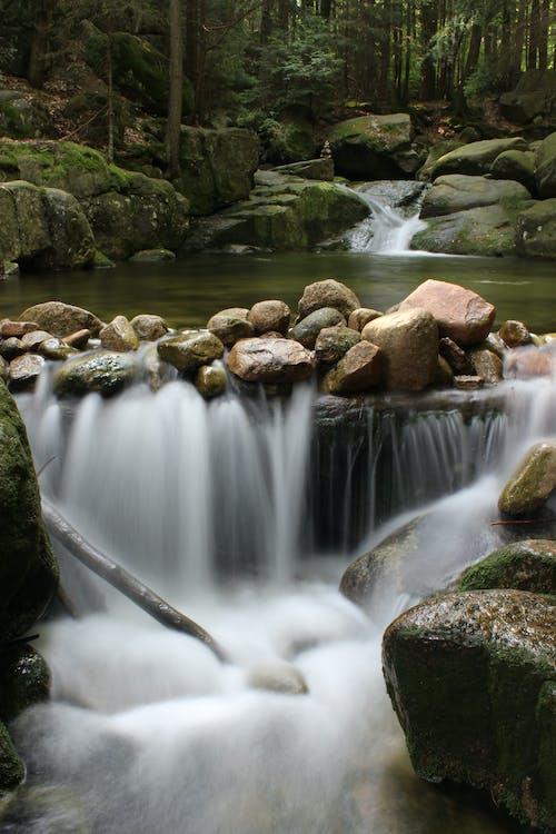 경치가 좋은, 락, 록, 물의 무료 스톡 사진
