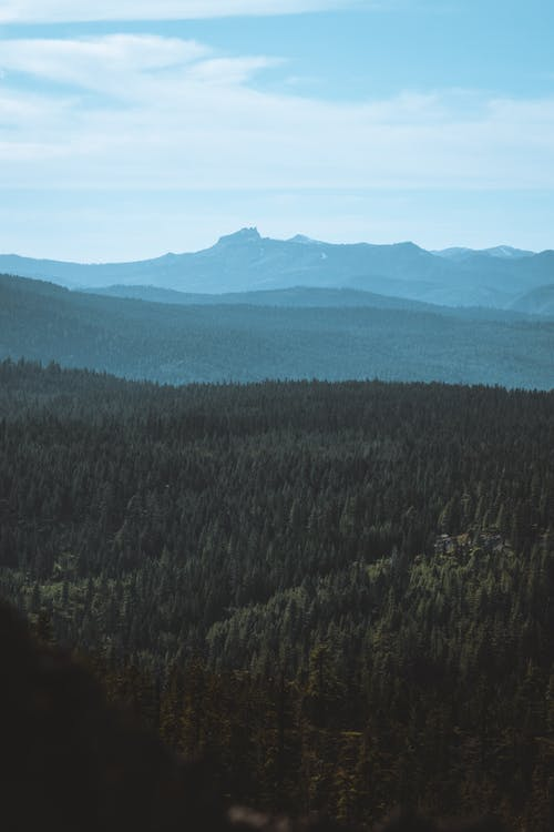 Kostenloses Stock Foto zu #wald, berg